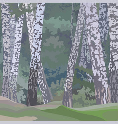 Cartoon painted background of a birch forest vector