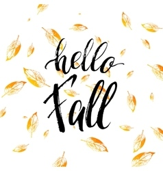Hello fall text isolated on orange leaves vector