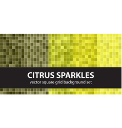 Square pattern set citrus sparkles seamless vector