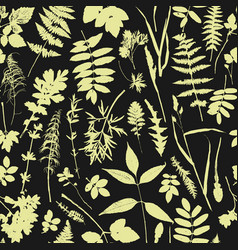 Seamless pattern with plants and leaves vector