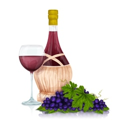 Wine jar and grape bunch print vector
