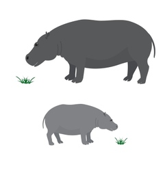 Big and little hippo vector