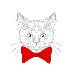 Cute cat portrait hand drawn hipster kitty head vector