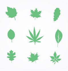 Foliage 1 vector