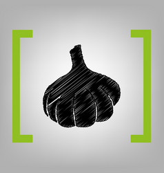 garlic simple sign black scribble icon in vector image vector image