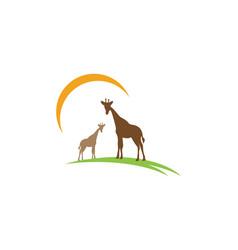 Giraffe silhouette abstract animal vector