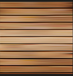isolated realistic seamless wooden texture vector image vector image