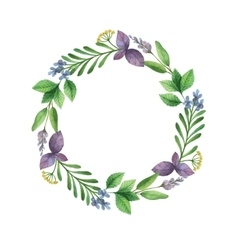 Watercolor hand painted frame with herbs vector