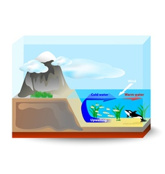 Upwelling currents vector