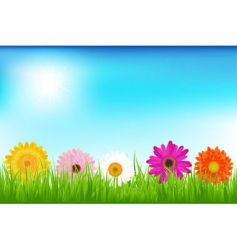 Bright flowers vector