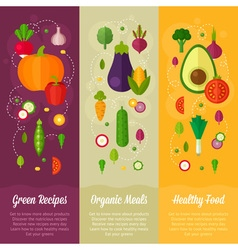 Set of concept banners with flat vegetable icons vector