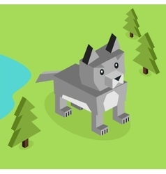 Wild Animal Wolf Isometric 3d Design vector image vector image