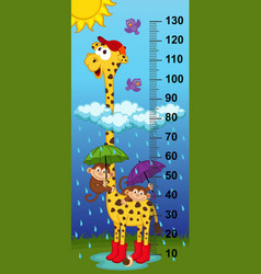 Giraffe height measure vector
