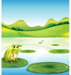 A hungry frog above the waterlily vector