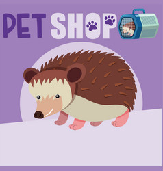 Poster design for pet shop with cute hedgehog vector