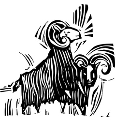 Two Rams vector image vector image