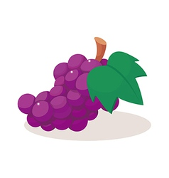 Icon fruit vector