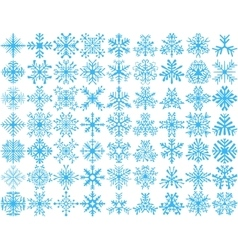 Set of 63 snowflakes vector