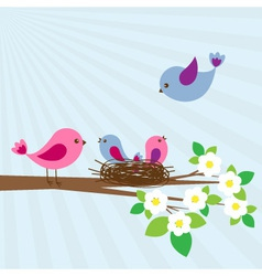 Family of birds vector image