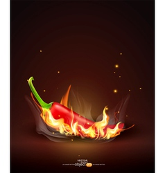 flaming red chili vector image vector image