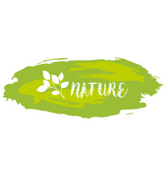 Font design for word nature in green vector