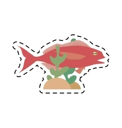 Cod fish sealife food ocean coral vector