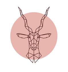 geometric head of the antelope vector image vector image