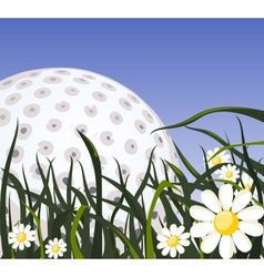 Golf ball on the grass vector image vector image