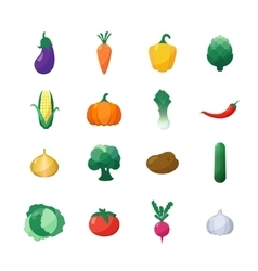 Icons Vegetables Flat Style Set Isolated vector image vector image