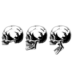 Graphic black and white human skull projection set vector