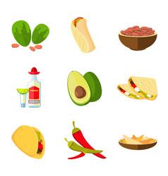 mexican taco burrito and nachos food avocado vector image