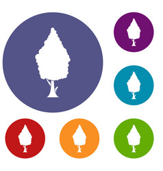 cypress icons set vector image