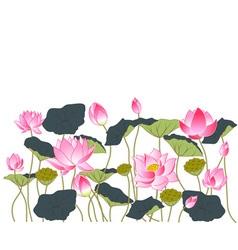 pink lotus vector image