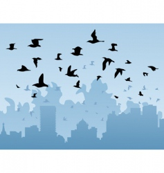 birds over a city vector image vector image