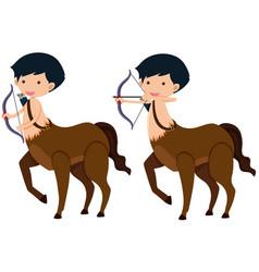 Centaur with bow and arrows vector