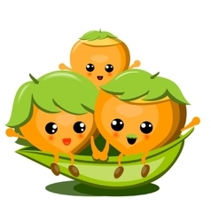 Family of cute nuts on white background vector