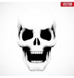 Human skull with open mouth in sketch style vector