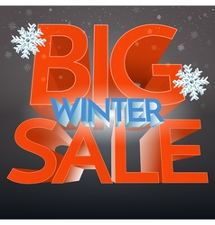 Big Winter Sale With Snowflake Banner Promo vector image vector image