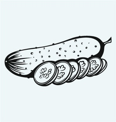 Cucumber and slices vector image vector image