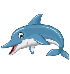 Cute dolphin cartoon vector