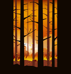 Forest fire natural disaster vector