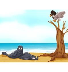 Seals and eagle at sea vector image