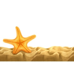 Summer background starfish in the sand vector image vector image