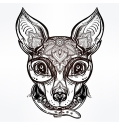 Vintage style dog portrait and collar vector image vector image
