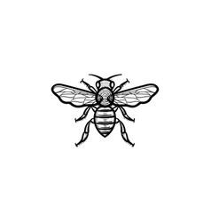 Bee hand drawn sketch icon vector
