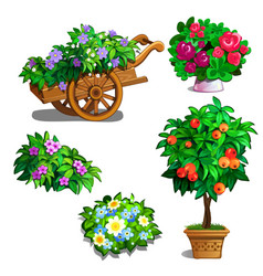 cart with flowers orange tree roses and bouquets vector image
