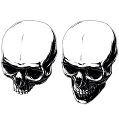 Cool graphic detailed human skulls set vector