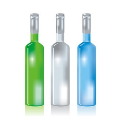 three glass bottles vector image