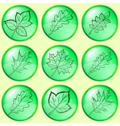 Leaves buttons set vector