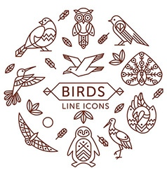 Birds line icons vector